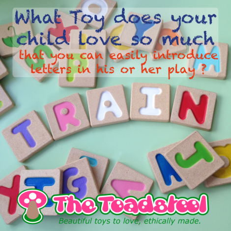 Plan-Toys-Learn-through-Toys-Play